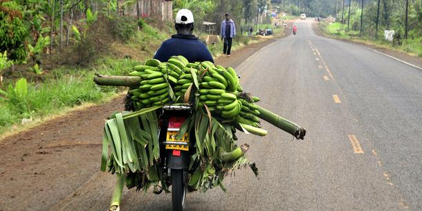 Bananentransport Kenia